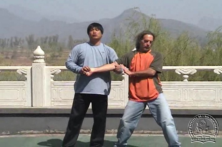 Yin Style Babua Fighting Methods - screenshot 9